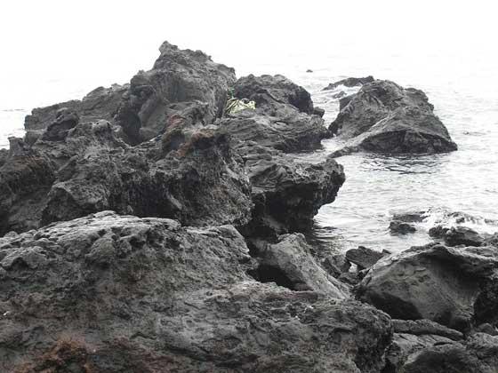 (丁仕美于2007年10月应邀参加中日韩三国BESETO美术节期间摄于韩国济州岛)