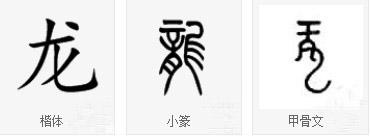 丁仕美大篆书法中堂《龙》-6