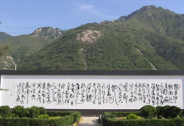 丁仕美 巨幅草书书法作品 《沁园春•长沙》